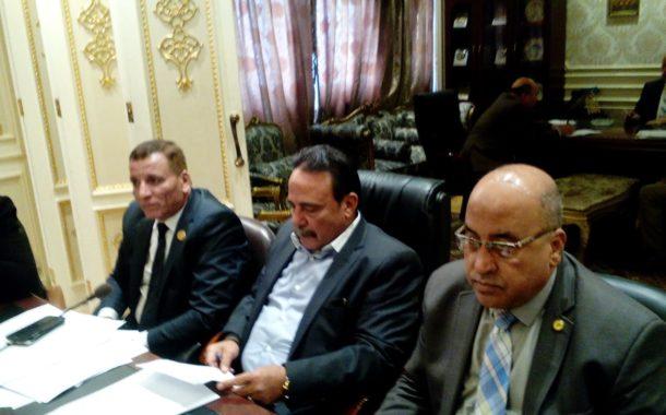 قوي عامله النواب: متابعة ملف المصريين العاملين بالخارج وحل المشكلات التي تواجههم