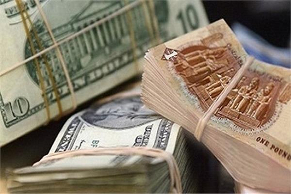 الدولار يتراجع امام الجنيه بالبنك المركزى