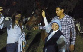 """""""محطة الزهراء للخيول العربية"""" مزاد علنى 18 يونيو القادم لبيع الفائض من الخيول وتقيم مادبة افطار للعاملين"""